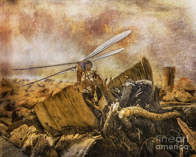 Digital Art - Dragonfly Dreams by Rhonda Strickland