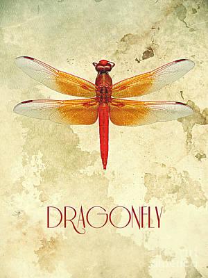 Digital Art - Dragonfly IIi by Binka Kirova