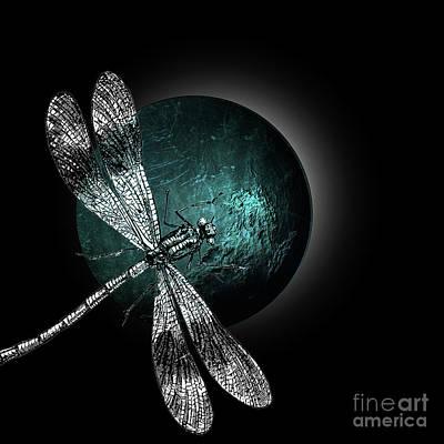 Schneider Mixed Media - Dragonfly IIi by PIA Schneider