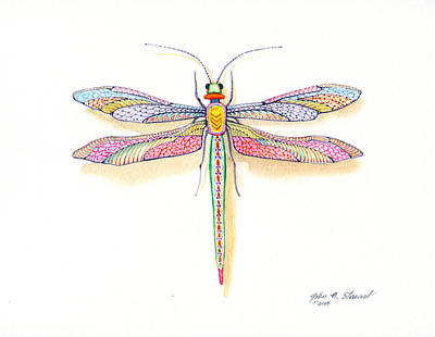 Painting - Dragonfly by John Norman Stewart