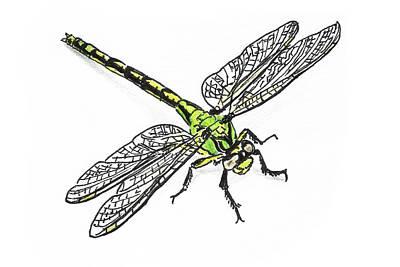 Painting - Dragonfly by Masha Batkova