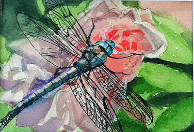 Dragonfly On Rose Art Print