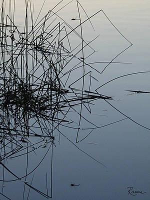 Kim Fearheiley Photography - Dragonfly Reflections by Rasma Bertz