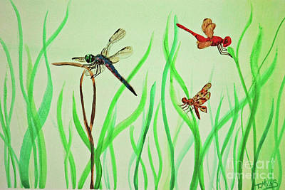 Painting - Dragonfly Trio by Terri Mills