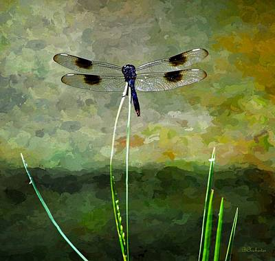 Odonata Painting - Dragonfly's Pinnacle by Barbara Chichester