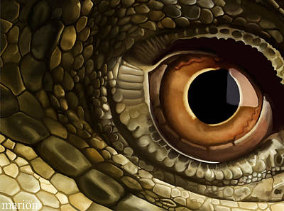 At Poster Digital Art - Dragon's Eye View by Marion Sipe
