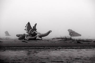 Driftwood Beach Fog Wall Art - Photograph - Dragonwood II by Randall Ingalls