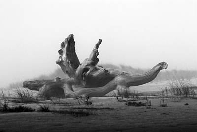 Driftwood Beach Fog Wall Art - Photograph - Dragonwood by Randall Ingalls