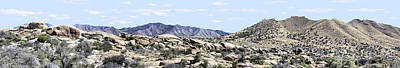 Dragoon Mountains Panorama Art Print by Sharon Broucek