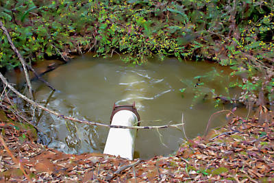 Photograph - Drainage Pool by Gina O'Brien