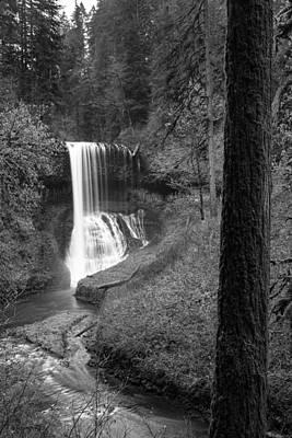 Priska Wettstein Pink Hues - Drake Falls in Black and White  by John McGraw