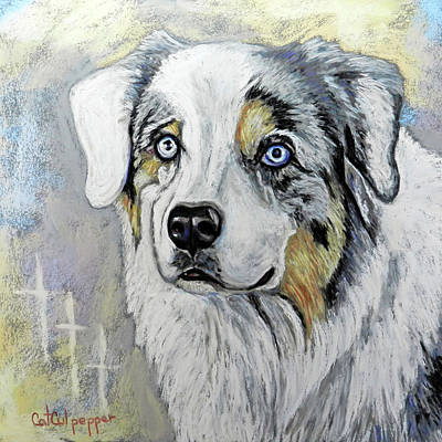 Drake The Aussie Original by Cat Culpepper