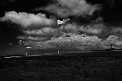 Photograph - Drama In Black And White by Windy Corduroy