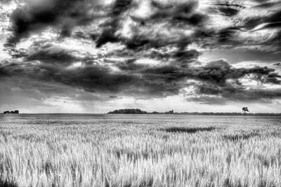 Photograph - Drama In Delmarva Bw by JC Findley