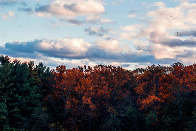 Forest Photograph - Dramatic Autumn Landscape by Rick Grossman