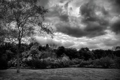 Landscape Digital Art - Dramatic Black And White Landscape by Lilia D