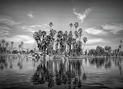 Photograph - Dramatic Black And White Palm Tree Reflections by Aimee L Maher Photography and Art Visit ALMGallerydotcom