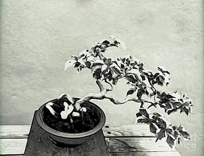 Collectors Corner Wall Art - Photograph - Bonsai Lovers Gift - Dramatic Bonsai by Onedayoneimage Photography