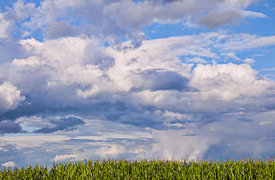 Modern Man Surf - Dramatic Cloudy Sky over Cornfield by Antique Images