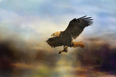 Eagle In Flight Photograph - Dramatic Entrance by Jai Johnson
