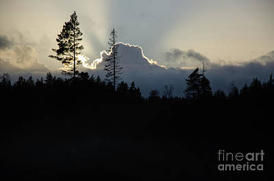 Photograph - Dramatic Forest And Clouds Silhouettes by Kennerth and Birgitta Kullman