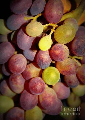 Dramatic Grapes Art Print by Carol Groenen