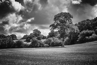 Photograph - Dramatic Harvest by Stewart Scott
