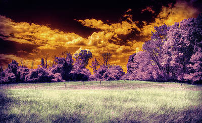 Photograph - Dramatic Sky Landscape by Lilia D