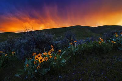 Photograph - Dramatic Spring Sunset In Boise Idaho Usa by Vishwanath Bhat