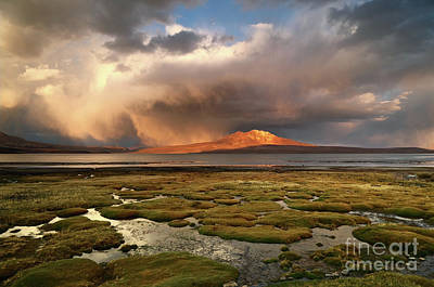 Photograph - Dramatic Stormy Skies Over Bofedales And Lake Chungara Chile by James Brunker