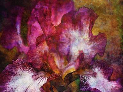 Dramatic White And Purple 0273 Idp_2 Art Print