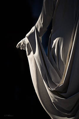 Photograph - Draped by Christopher Holmes