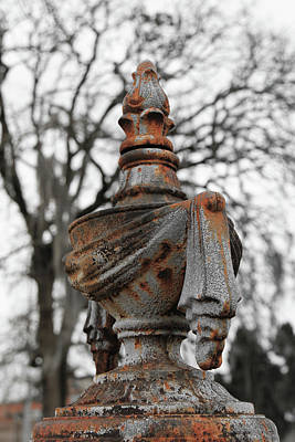 Photograph - Draped Iron by Greg Sharpe