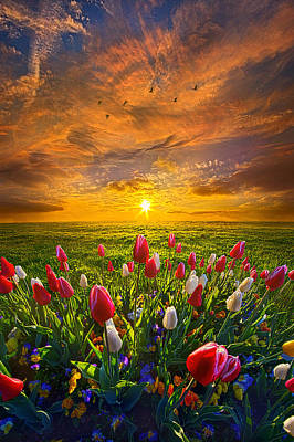 Photograph - Drawing Near To Me by Phil Koch