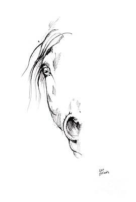 Andalusian Horse Drawing - Drawing Of A Horse 2017 02 04 by Angel Tarantella