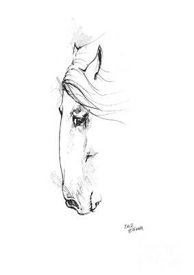 Andalusian Horse Drawing - Drawing Of A Horse 2017 02 07 by Angel Tarantella