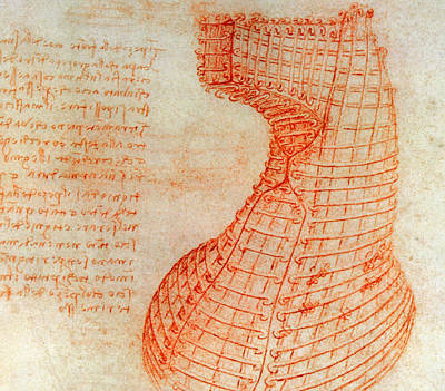 Drawing Of The Ironwork Casting Mould For The Head Of The Sforza Horse Art Print by Leonardo Da Vinci