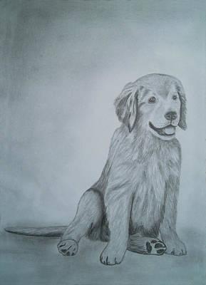 Drawings Portrait Artwork Of A Little Dog   Art Print