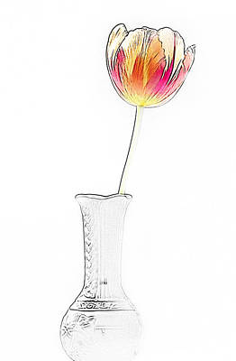Photograph - Drawn Tulip In Vase by  Onyonet  Photo Studios