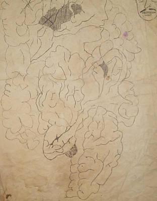 Internal Organs Drawing - Dream 5 by William Douglas