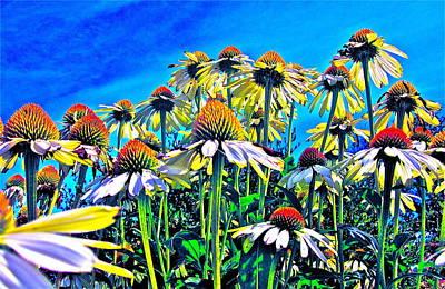 Dream Field Art Print by Gwyn Newcombe