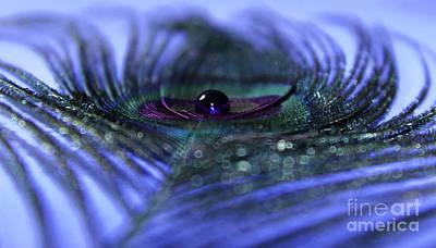 Sapphire Photograph - Dream In Sapphire by Krissy Katsimbras