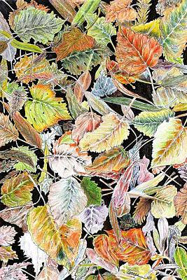 Changing Leaves Drawing - Dream Leaves by Rich Torres