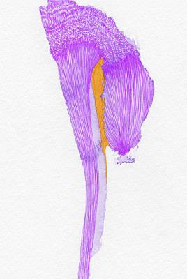 Dream - #ss16dw058 Art Print by Satomi Sugimoto