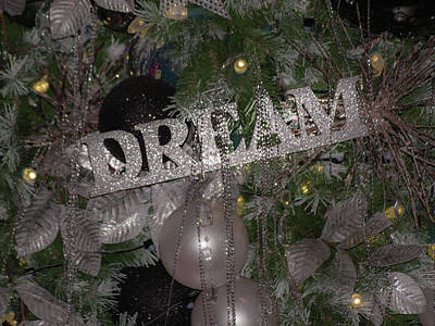 Photograph - Holiday Dream by Stewart Helberg