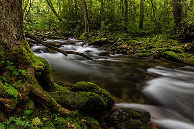 Unique Photograph - Dream Stream by Gary Migues