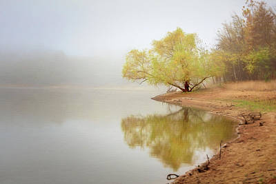 Photograph - Dream Tree by Robert FERD Frank