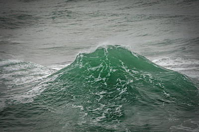Photograph - Dream Wave by Bill Posner