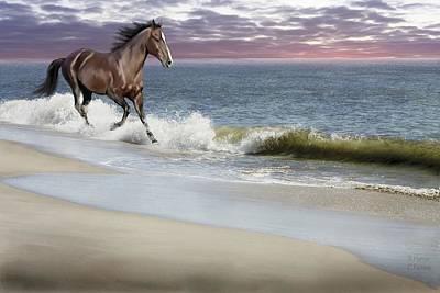 Bhymer Digital Art - Dreamer On The Beach by Barbara Hymer