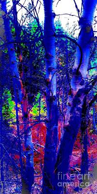 Mixed Media - Dreaming Aspens by Jennifer Lake